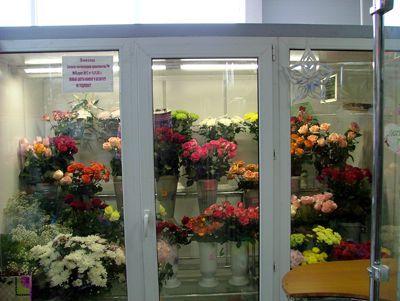 """Холодильная камера для цветов, модульная система в магазин цветов ТЦ """"Карусель"""""""