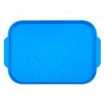 Поднос столовый 450х355 мм с ручками синий фото, купить в Липецке | Uliss Trade