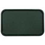 Поднос столовый из полистирола 530х330 мм темно-зеленый фото, купить в Липецке | Uliss Trade