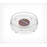 Увеличенная круглая монетница RONDA-XL фото, купить в Липецке | Uliss Trade