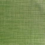 Салфетка сервировочная 45*33 см. зеленое яблоко, пвх APS фото, купить в Липецке | Uliss Trade