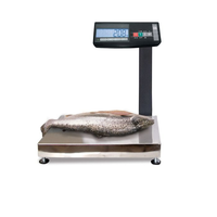 МК-AВ11 весы влагозащищенные с автономным питанием фото, купить в Липецке | Uliss Trade