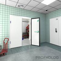 Распашные двустворчатые холодильные двери фото, купить в Липецке | Uliss Trade
